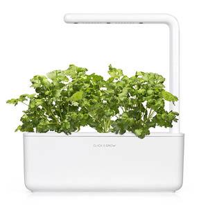 Koriander Smart Garden