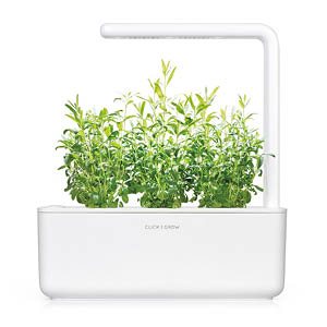 Ysop Smart Garden