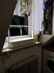 Smart Garden Fensterbank