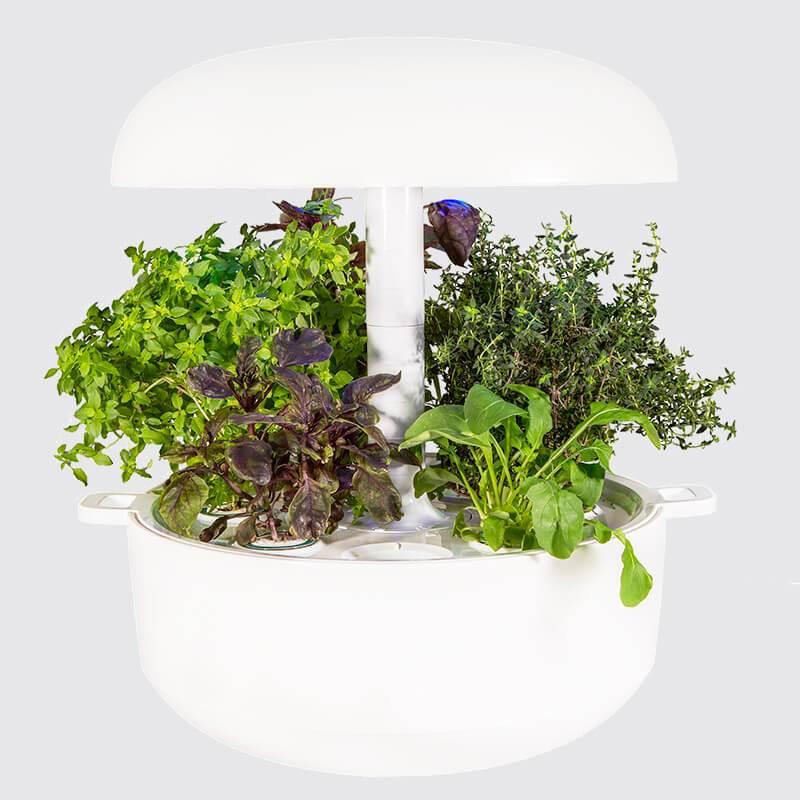 Plantui Smart Garden 6 weiß